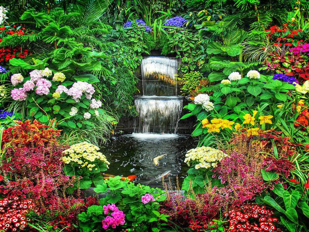Waterfall Desktop Wallpaper Download Find Nature Wallpaper 1024x768