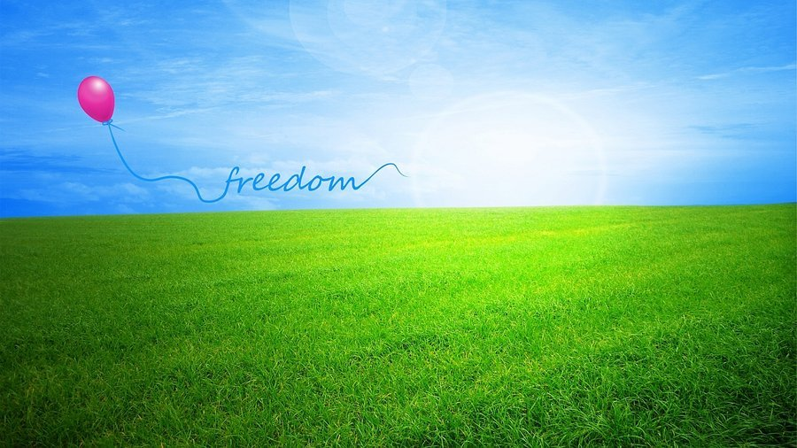 freedom wallpaper hd freedom hd wallpaper for wide 16 10 5 3 900x506