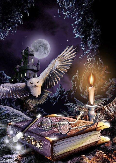 of Pagan Studies GROUP WICCA STUDIES 480x672