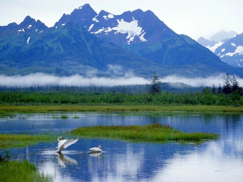 Alaska Nature Pictures Wallpaper Wallpapersafari
