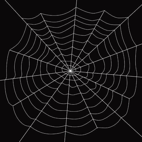 Spider Web White Over Black 600x600