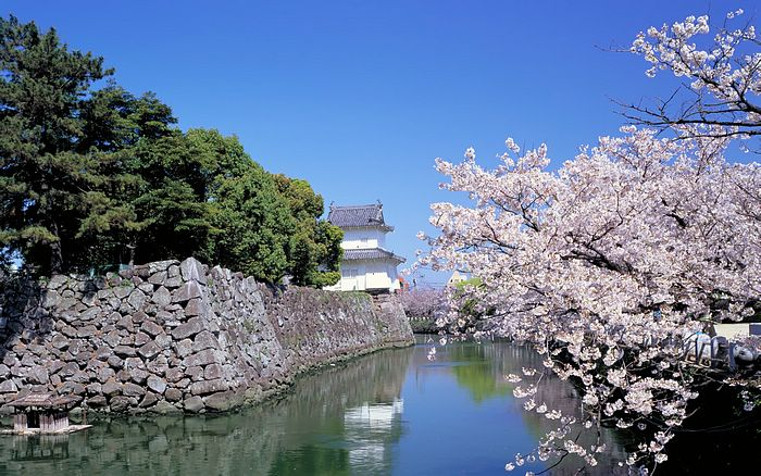 Japanese Landscape   Japan Travel Vacation Japan Country Scenery 700x438