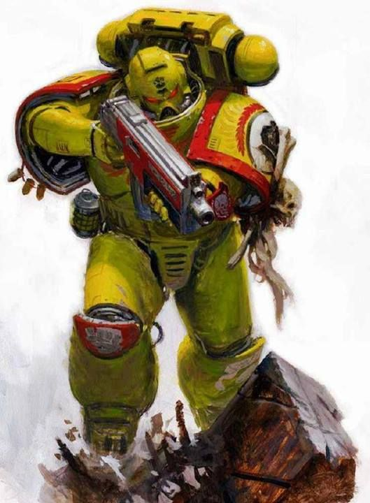 Imperial Fist Space Marine The 41st Millenium Pinterest 529x720
