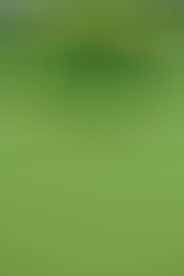 Green Gradient - iPhone Wallpaper