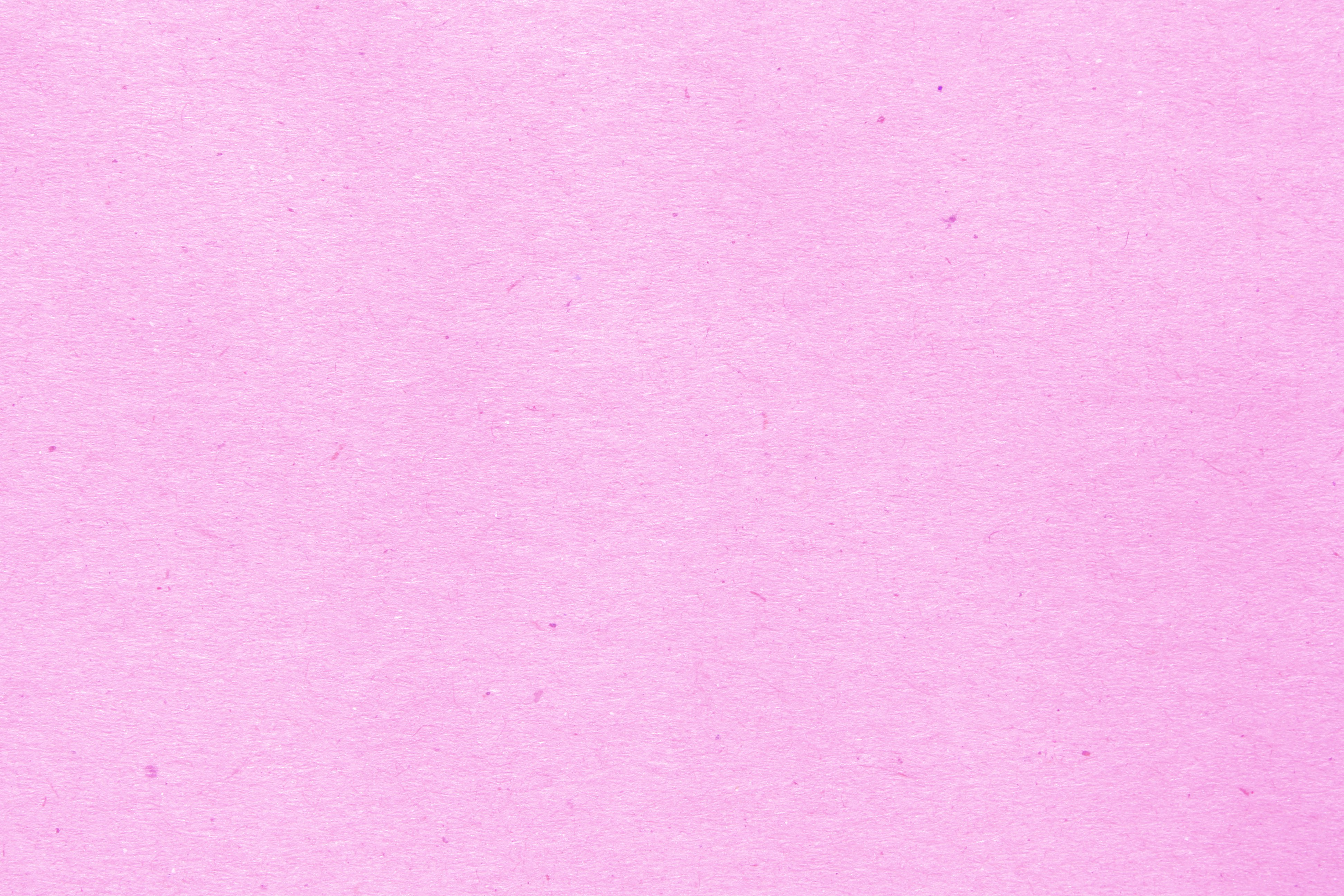 Related Pictures light pink background 3888x2592