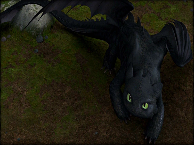 Toothless the Dragon images Toothless wallpaper photos 800x600