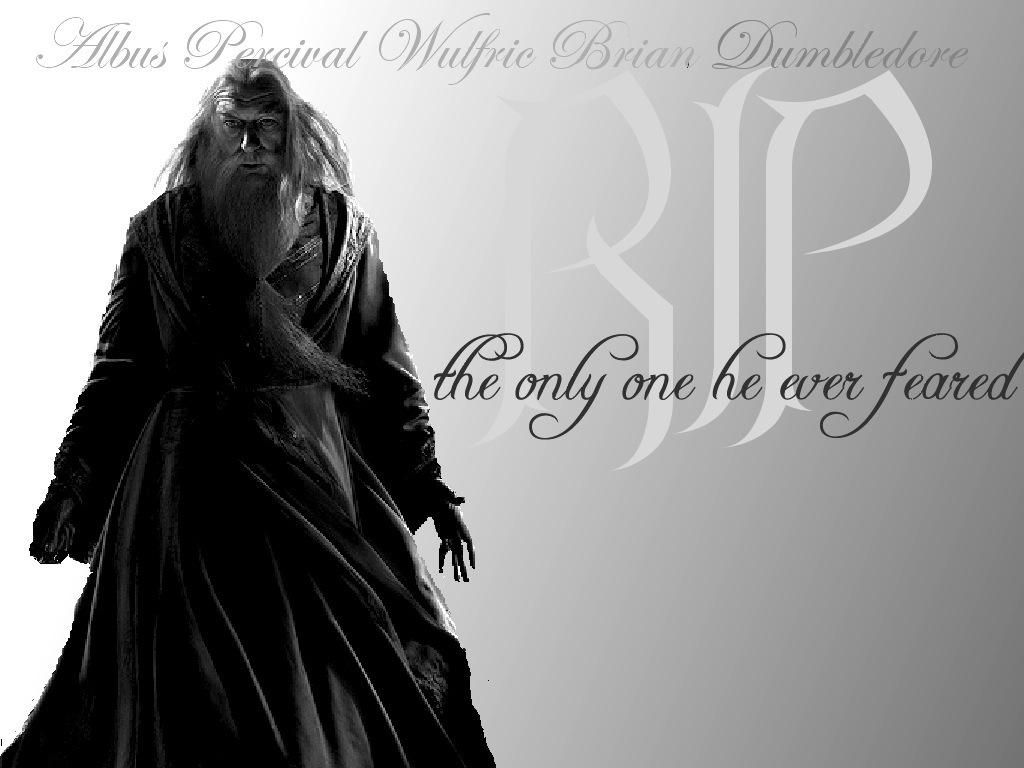 Albus Dumbledore   Albus Dumbledore Wallpaper 7750704 1024x768