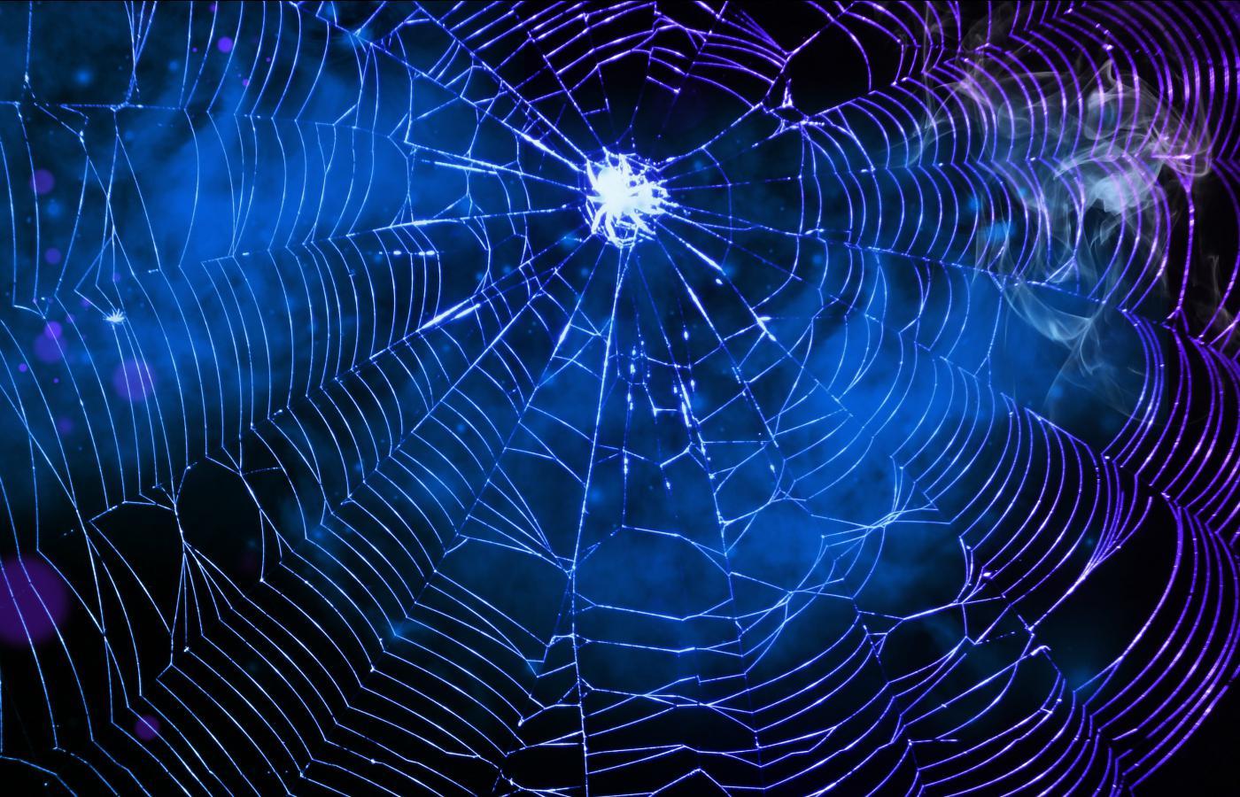 Spider Web Wallpaper 1400x900