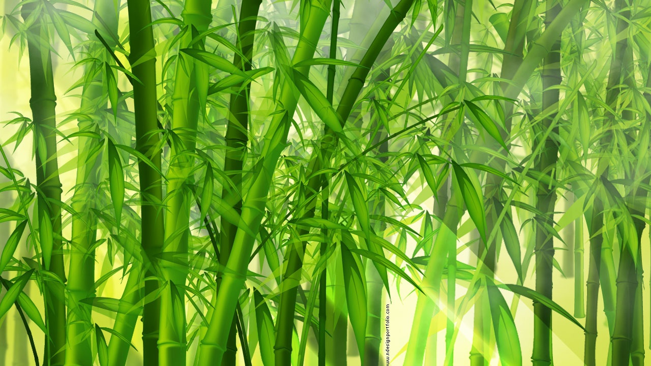 Wallpaper Bamboo Wallpapersafari