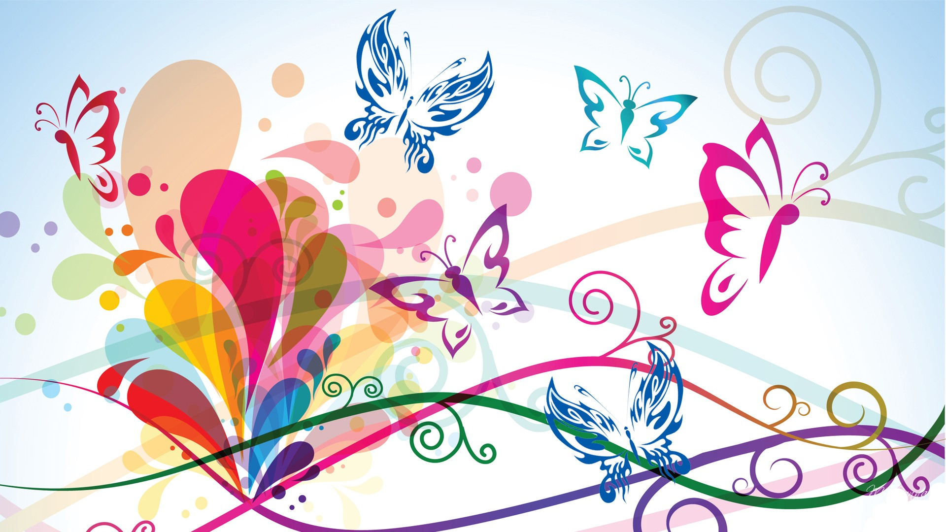 Colorful Butterfly Backgrounds Wallpaper 7 Hd Wallpaper 1920x1080