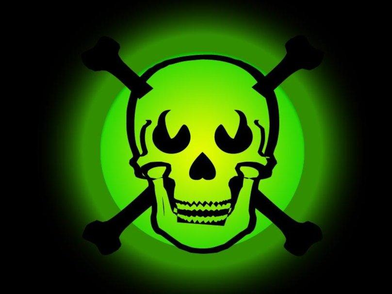 Green skull wallpaper   ForWallpapercom 808x606