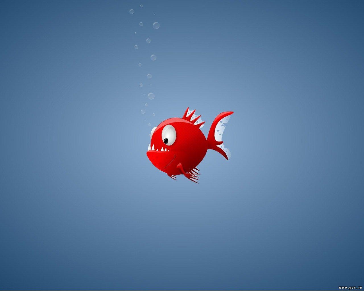 cute fish wallpaper - photo #10