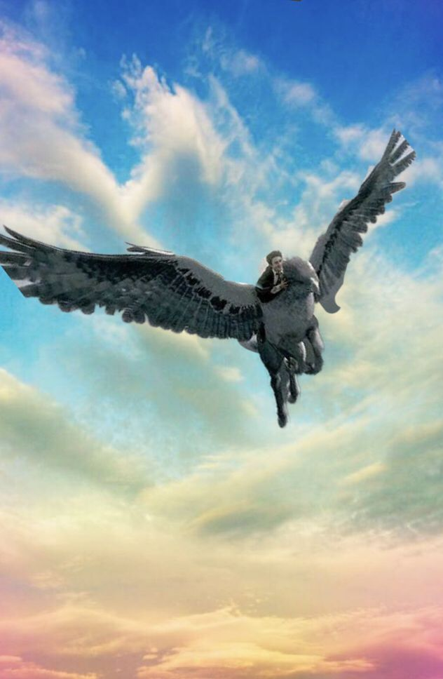 Harry and Buckbeak flying into the sunset Harry Potter in 2019 632x968