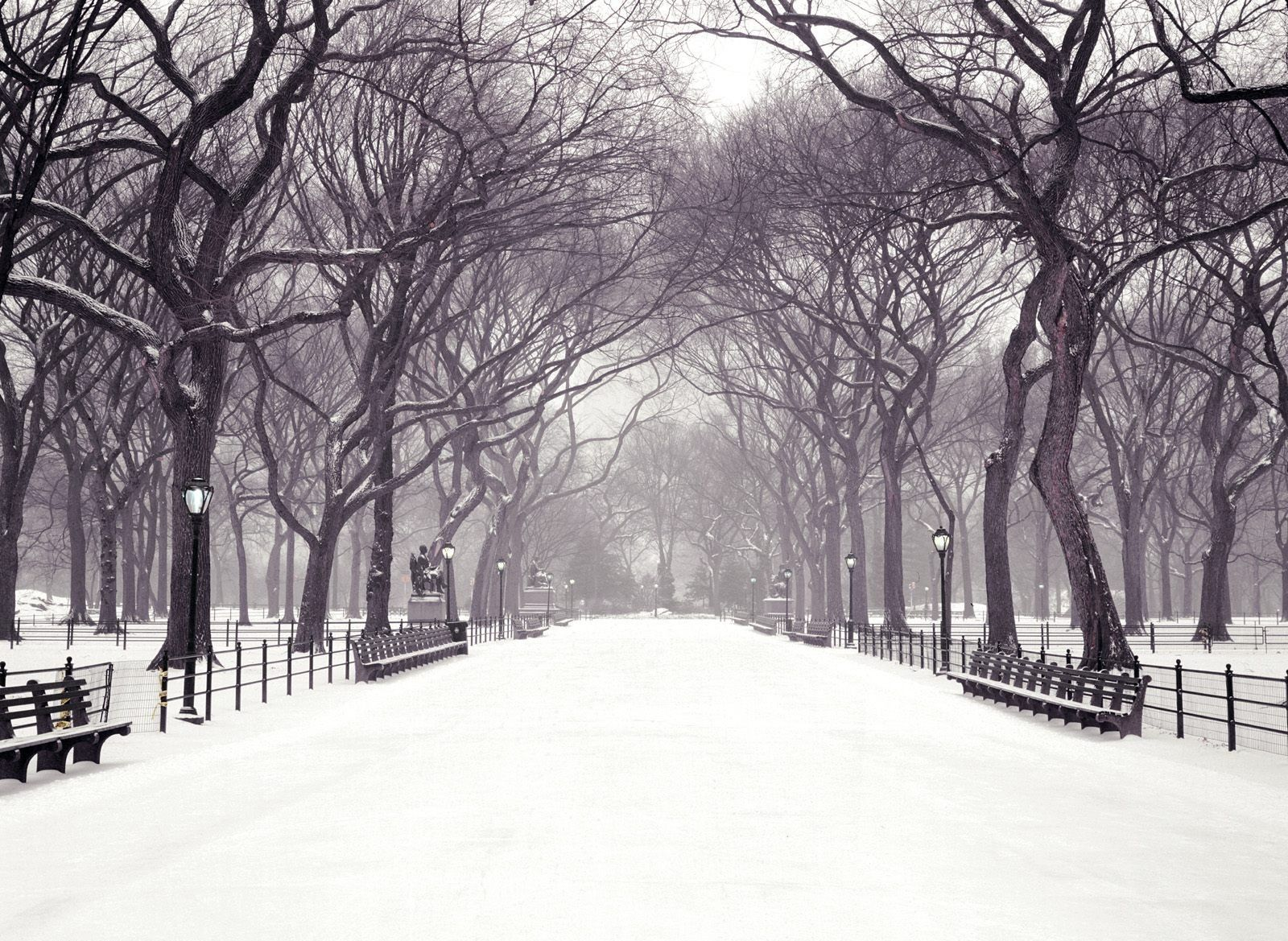 Central Park Memorial New york christmas Winter wallpaper 1600x1169