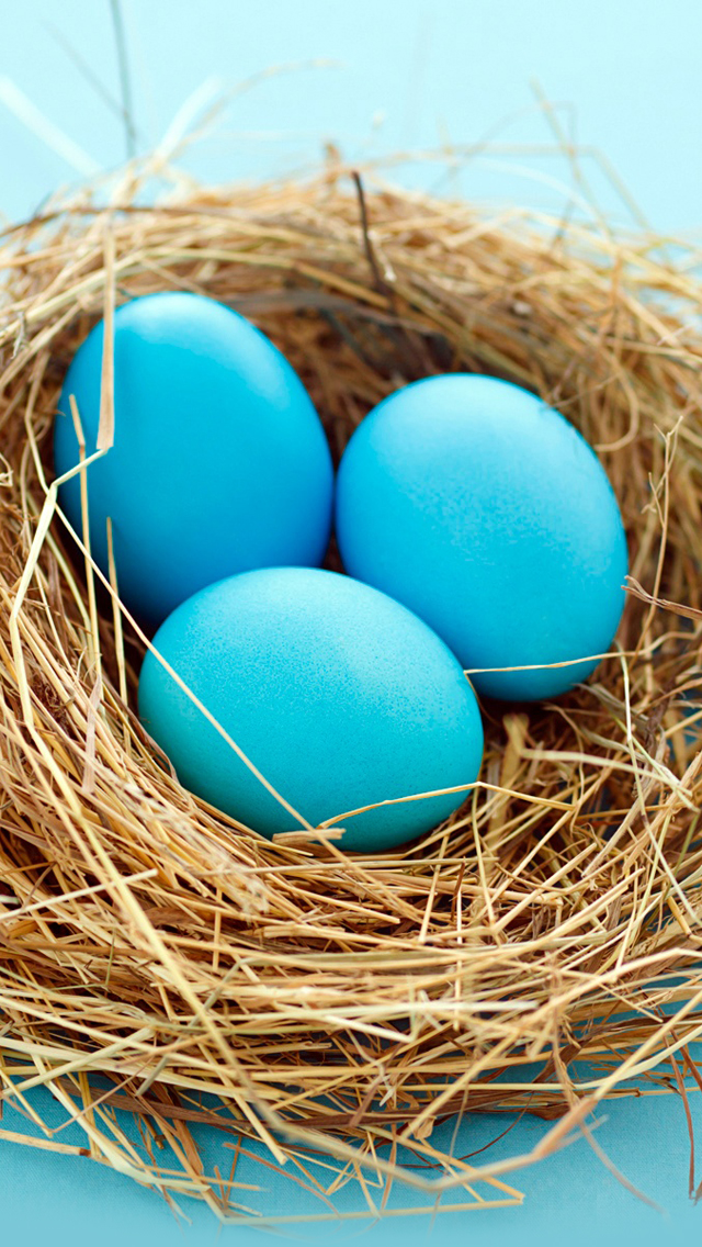 Easter blue Eggs iPhone 5s Wallpaper Download iPhone Wallpapers 640x1136