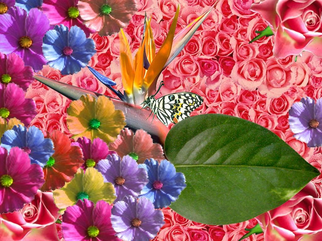 beautiful spring wallpaper spring 0jpg 1024x768