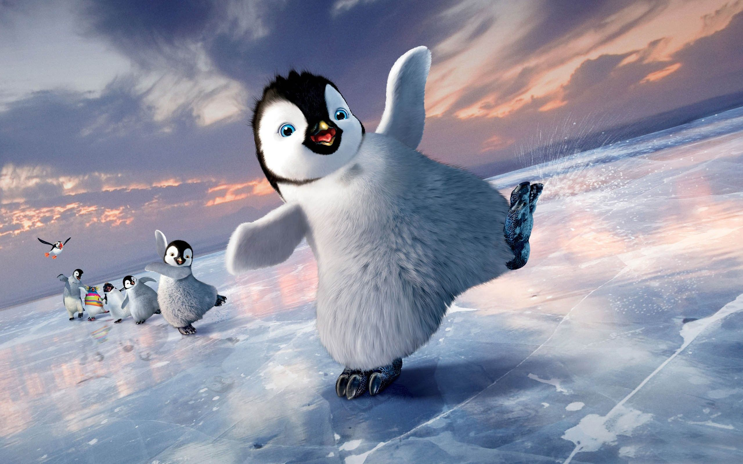 Penguin Wallpapers HD Pictures One HD Wallpaper Pictures Mode 2560x1600