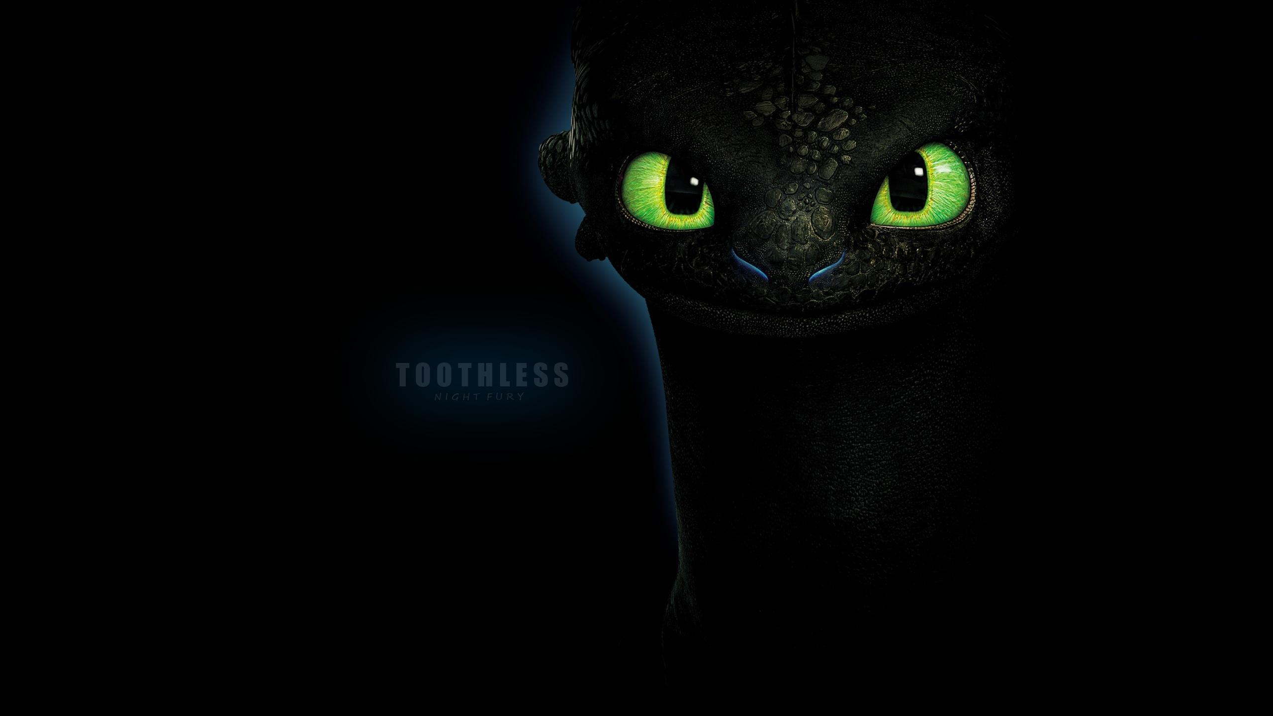 Toothless Wallpapers 2560x1440
