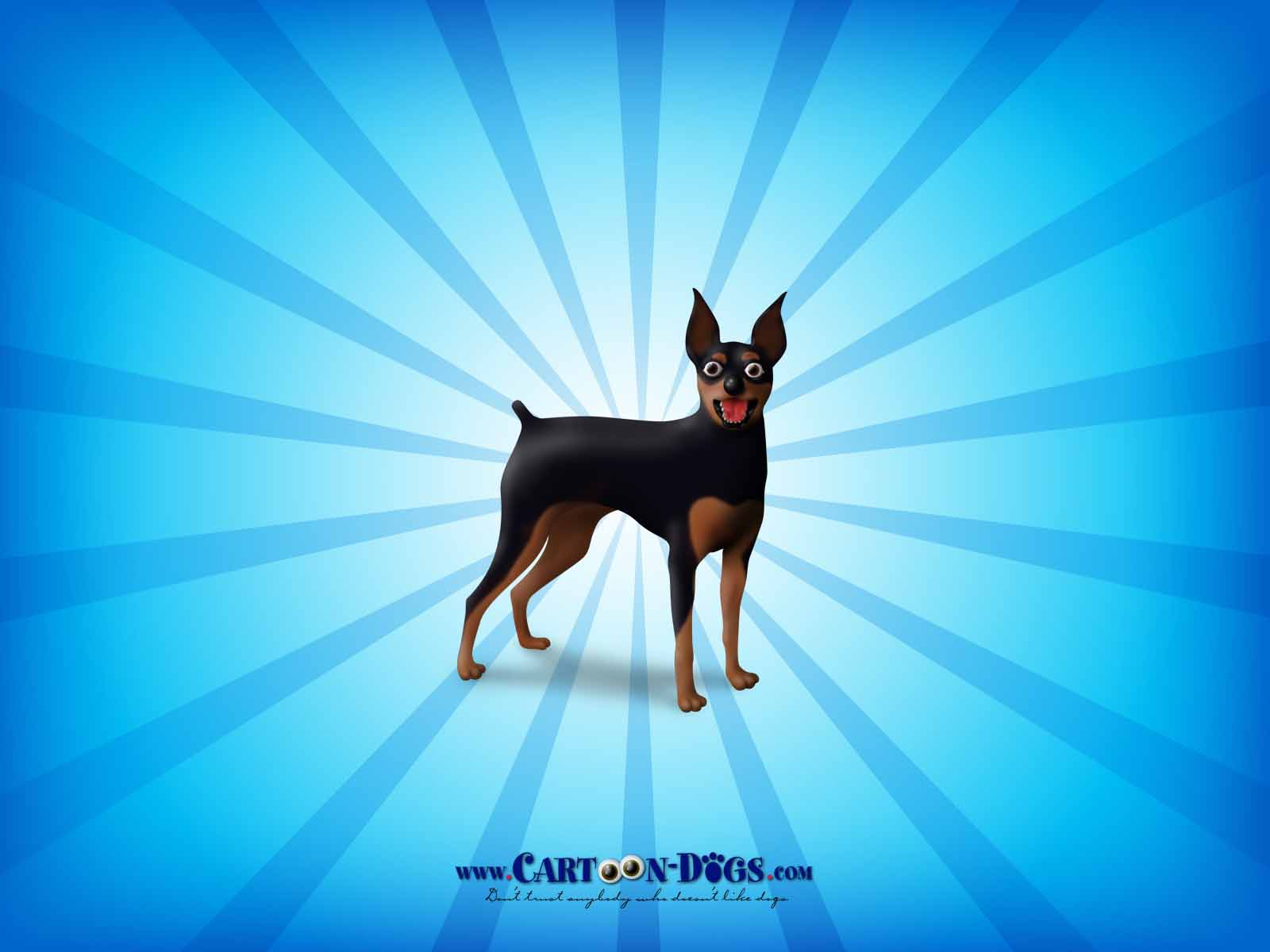 Wallpaper Miniature Pinscher Wallpapers 1600x1200