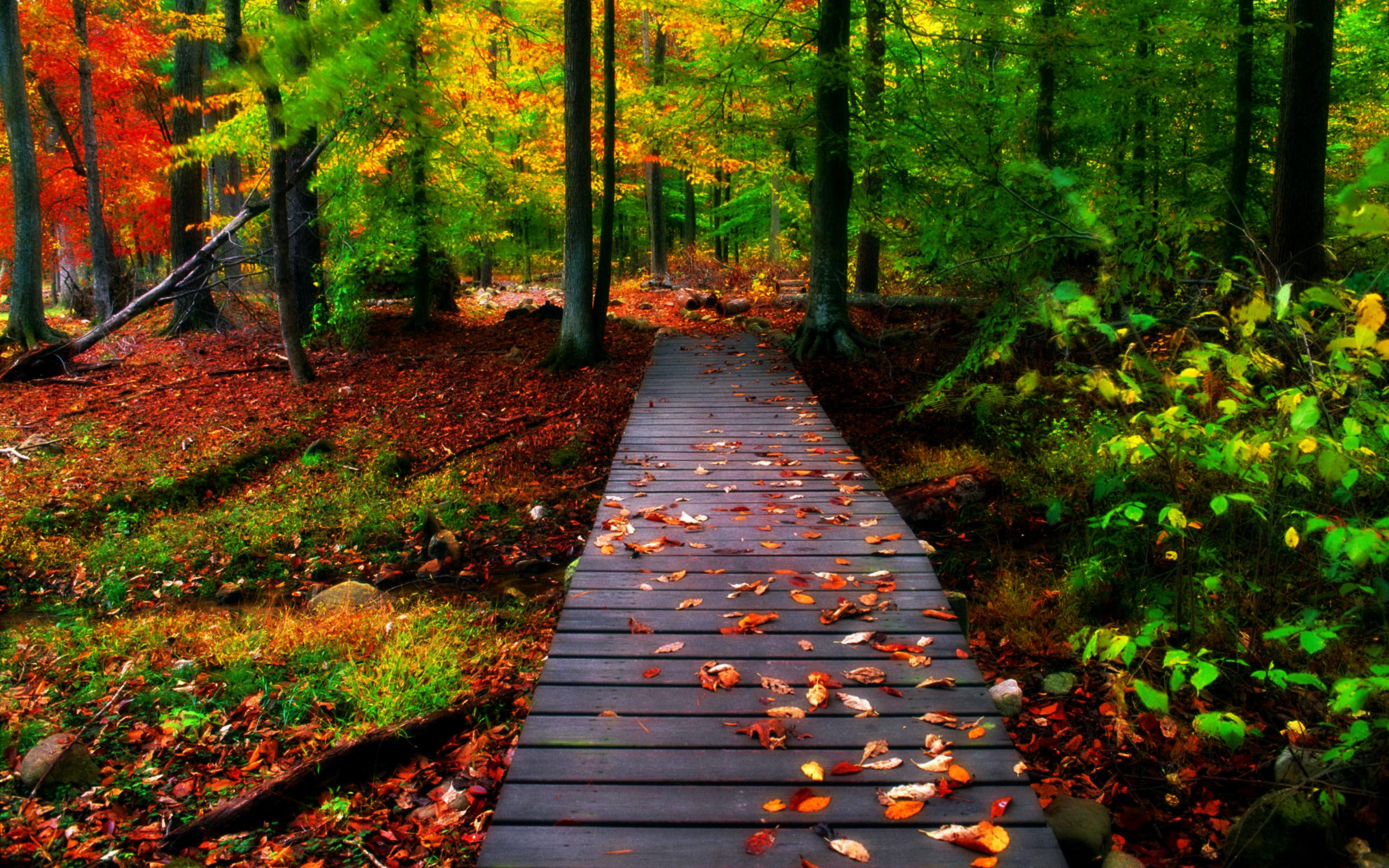 .com/1280/free-autumn-landscaper-computer-desktop-wallpaper-fall ...