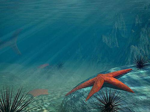 Free Download 3d Ocean Wallpaper 500x375 For Your Desktop