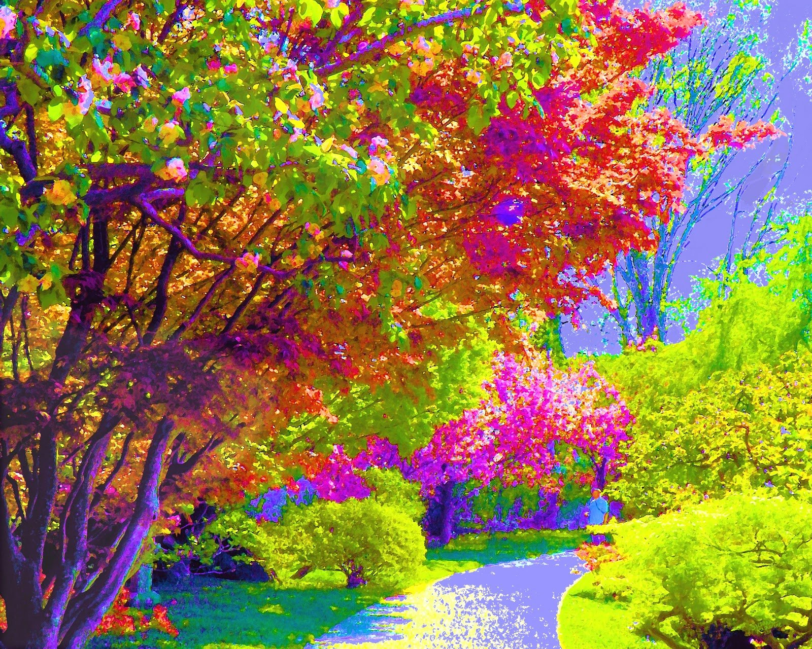 trees painting background here you can see colorful trees painting 1600x1280