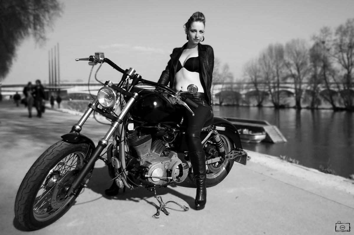 Harley Davidson Warhawk concept pin up   HD Motorcycle Wallpaper 1200x796