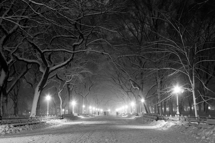 Central Park Fine Art Photography Prints 900x600