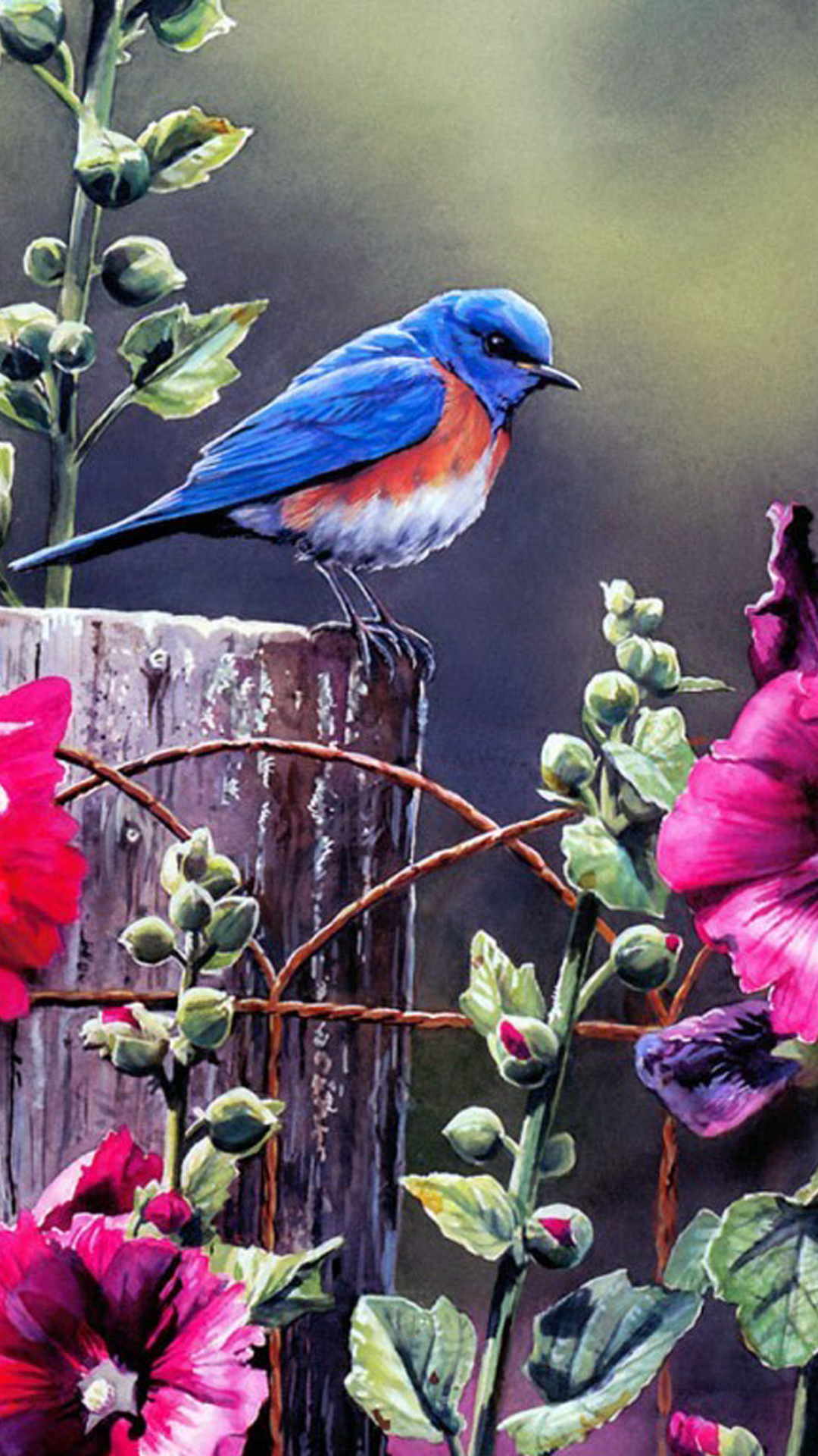 Открытку тете, птицы картинки красивые на телефон