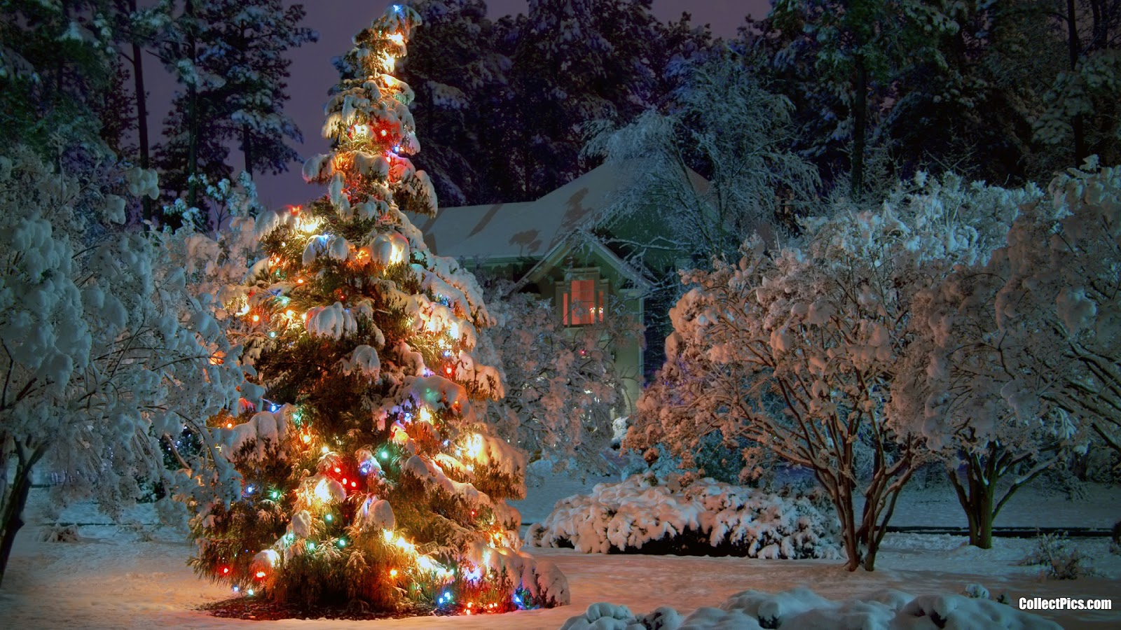 Christmas Lights Wallpaper Wallpaper Mansion 1600x900