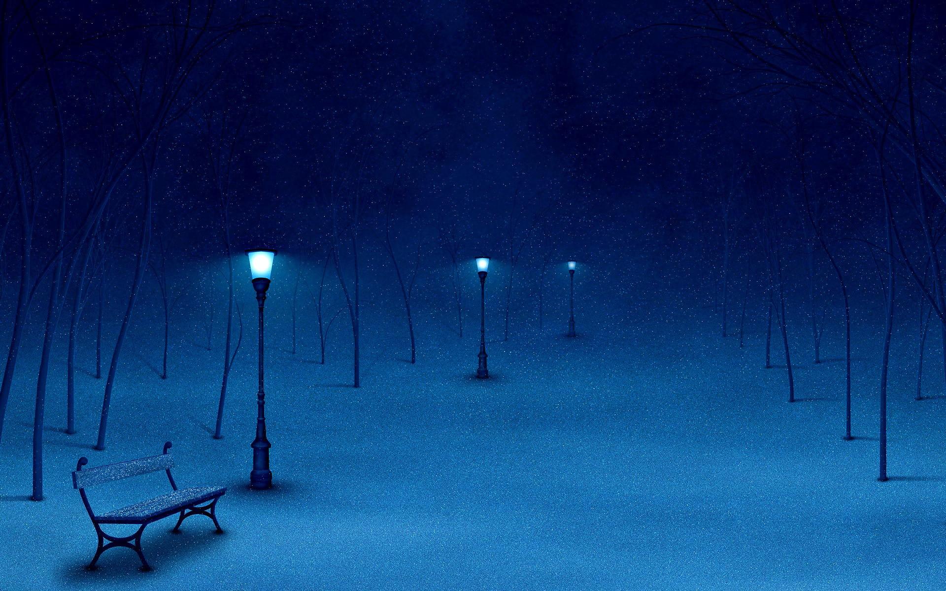 Night Winter Park Finland Wallpaper Wide Wallpaper WallpaperLepi 1920x1200