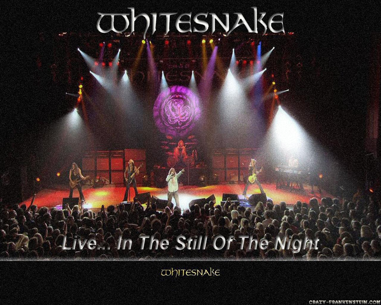 Whitesnake wallpapers   Music   Crazy Frankenstein 1280x1024