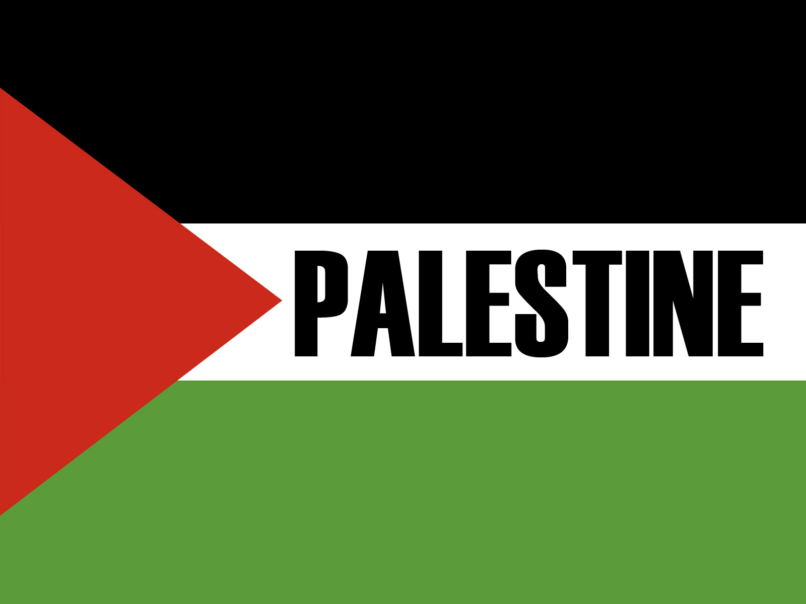 palestine flag backgrounds wallpapersjpg 1600x1200