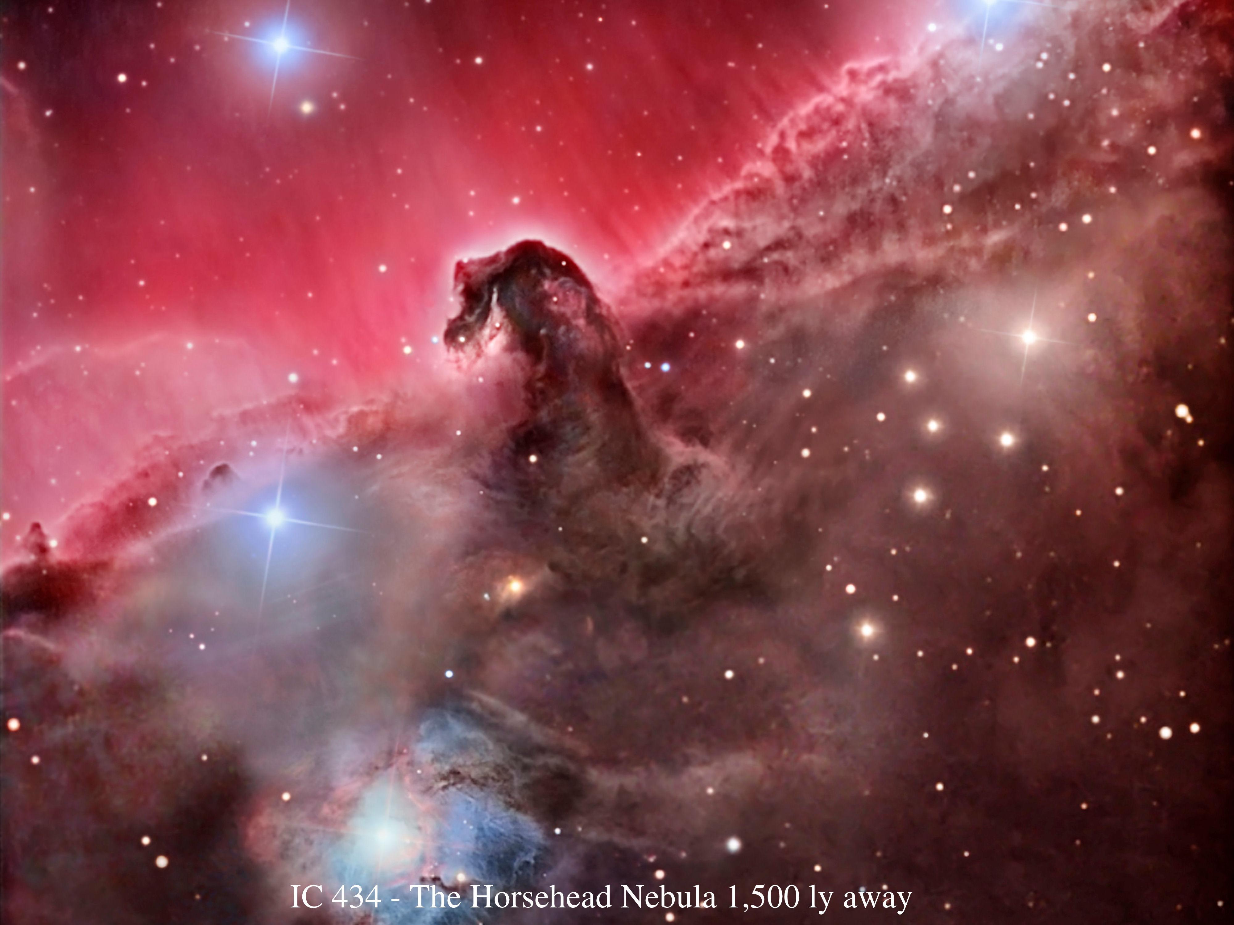 Horse Nebula Wallpaper - WallpaperSafari