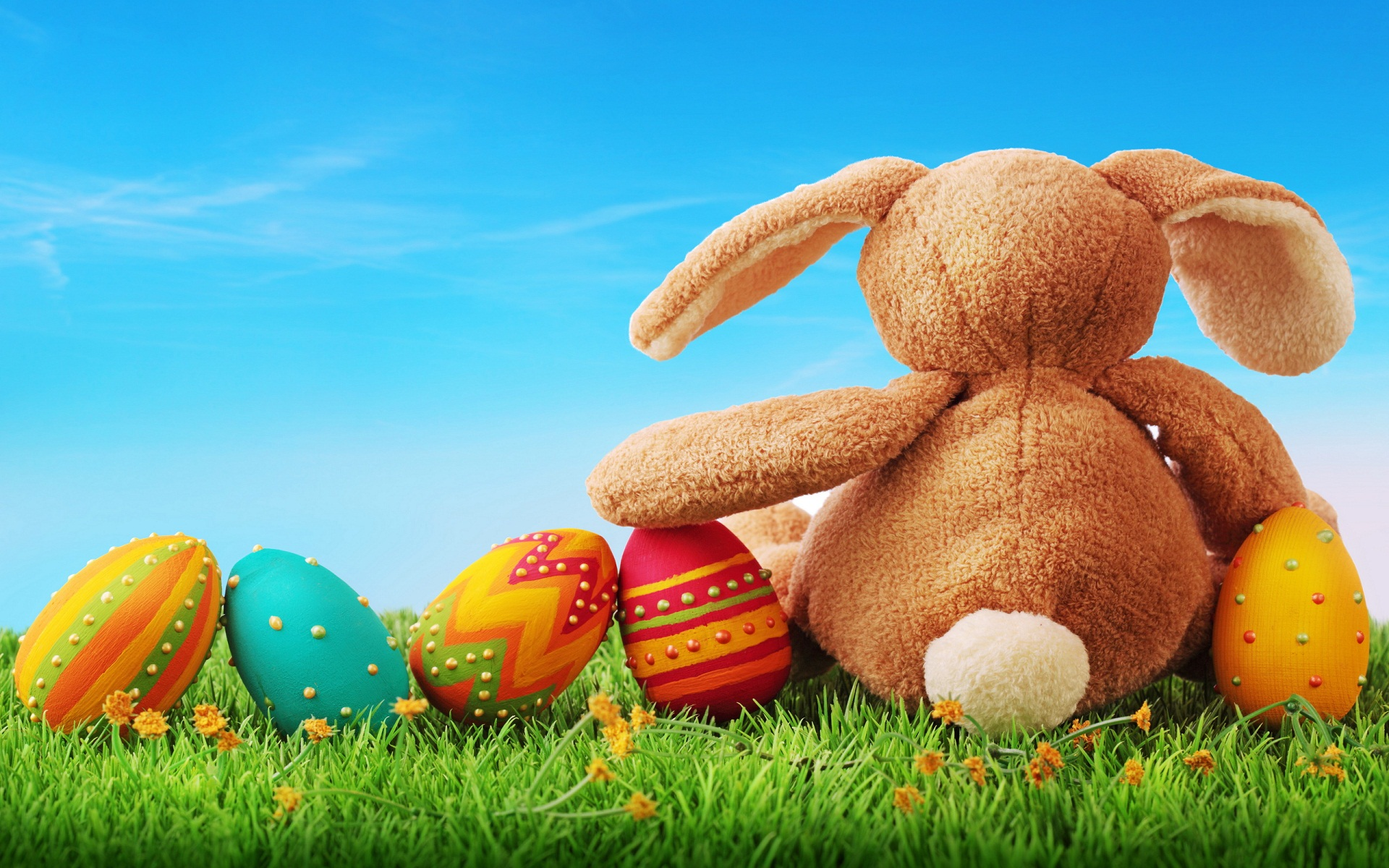 Karoline Kate Wallpapers Previous story Easter Eggs HD Wallpapers 1920x1200