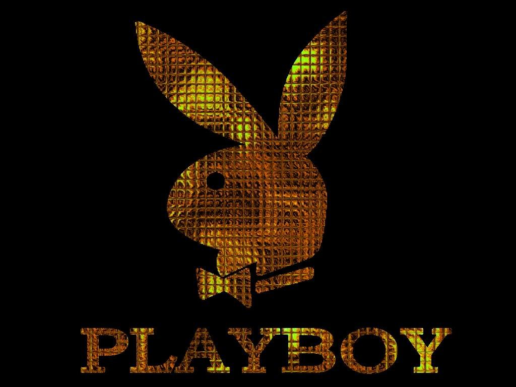 Gold Playboy Logo Exclusive HD Wallpapers 2897 1024x768