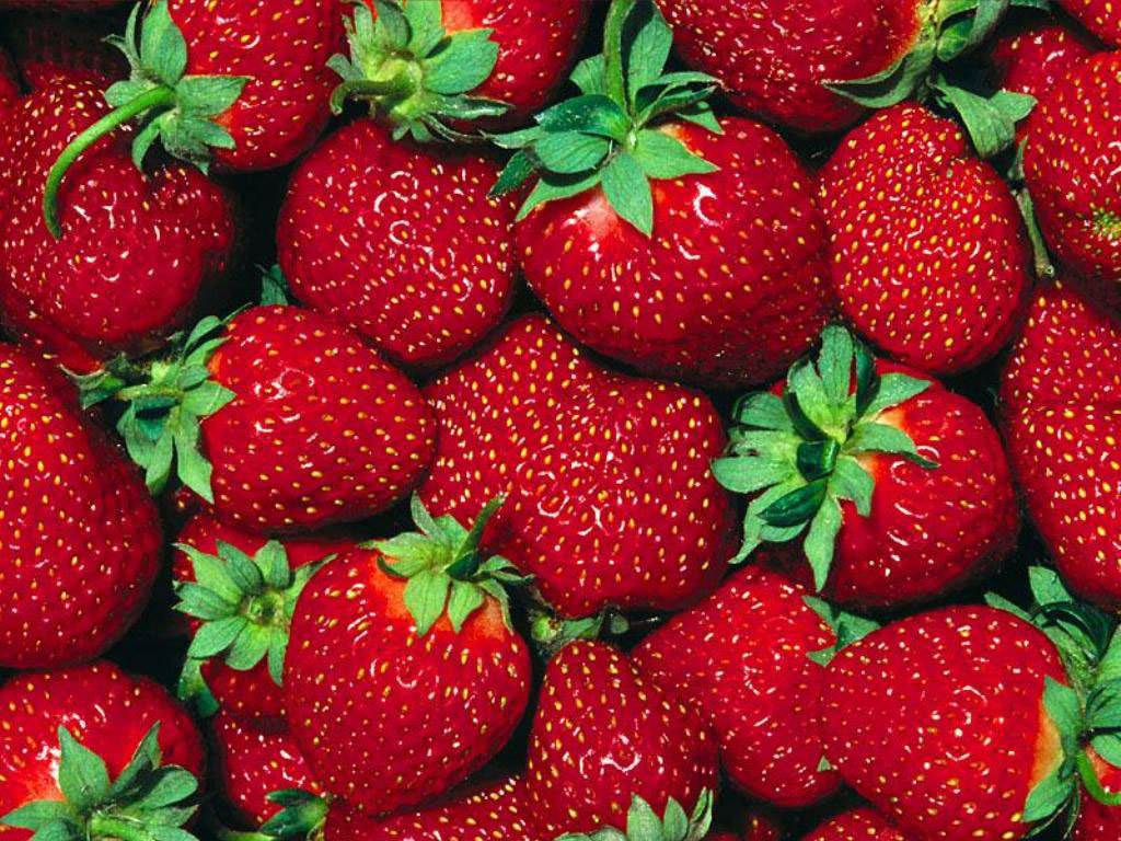 Strawberry Wallpaper   Fruit Wallpaper 6102247 1024x768