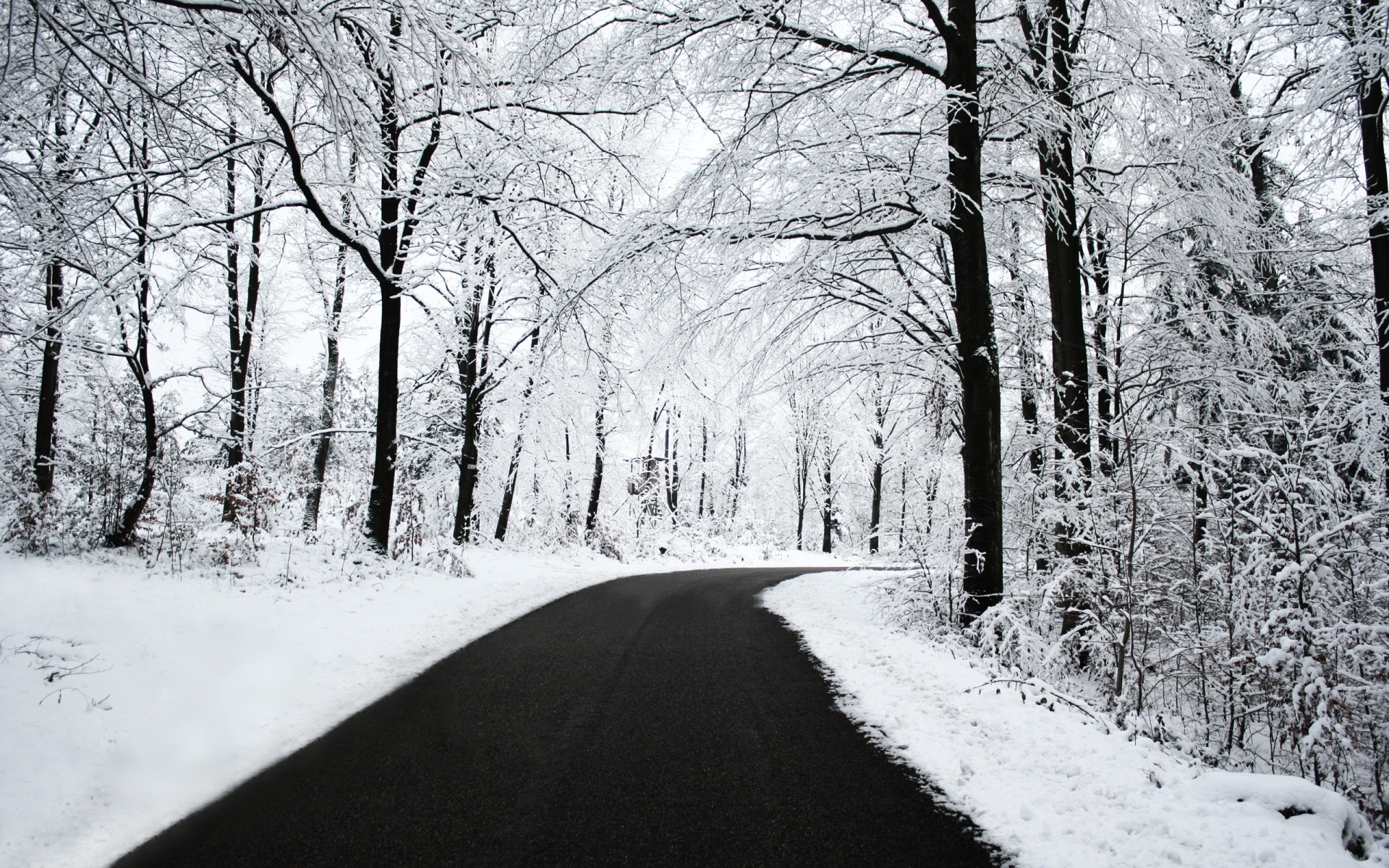 Beautiful Winter HD Wallpapers Winter And Black Road Wallpaper 1920x1200