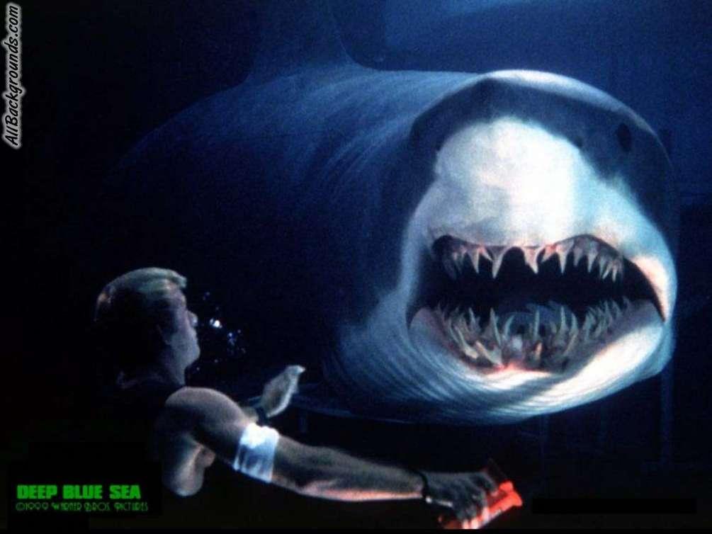 Deep Blue Sea Backgrounds   Twitter Myspace Backgrounds 1005x754