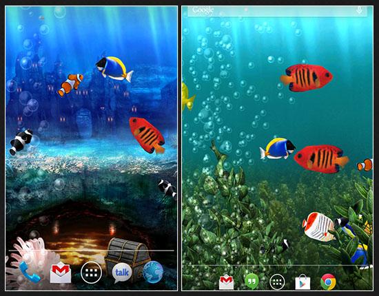 Download Aquarium Live Wallpaper App 550x430
