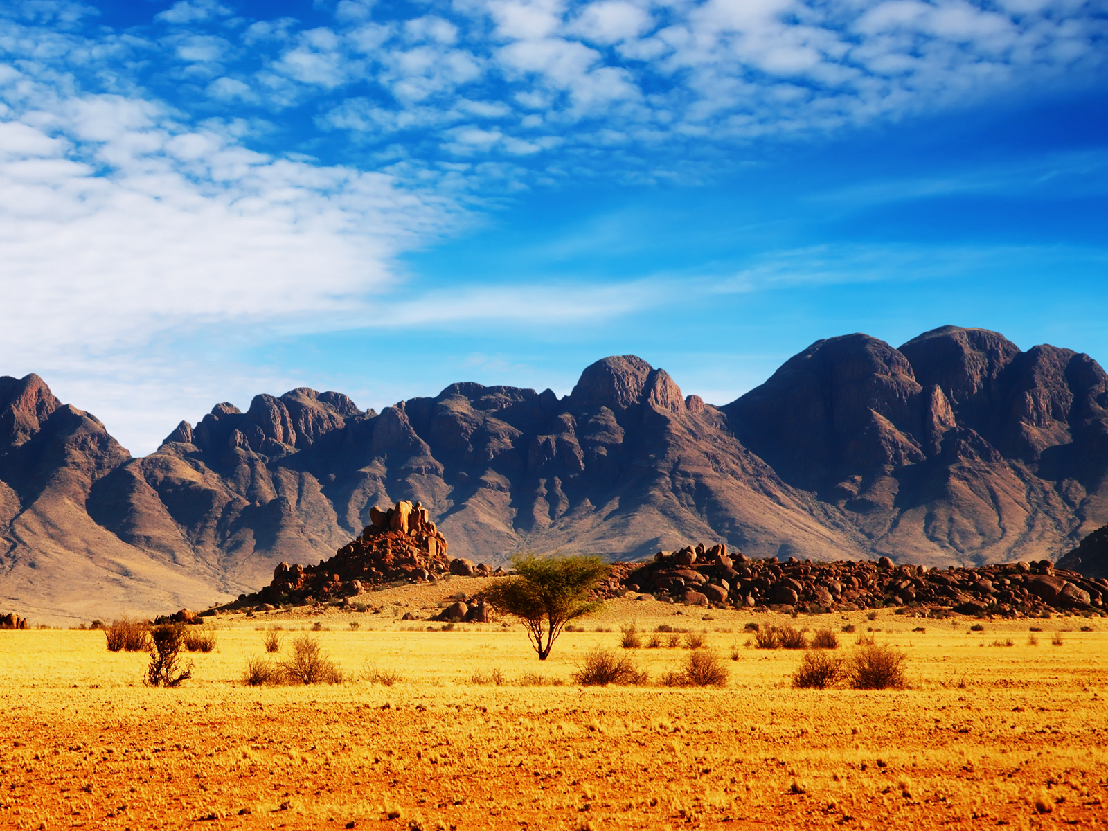 away half our justice system spring desert wallpaper inkbluesky 1600x1200