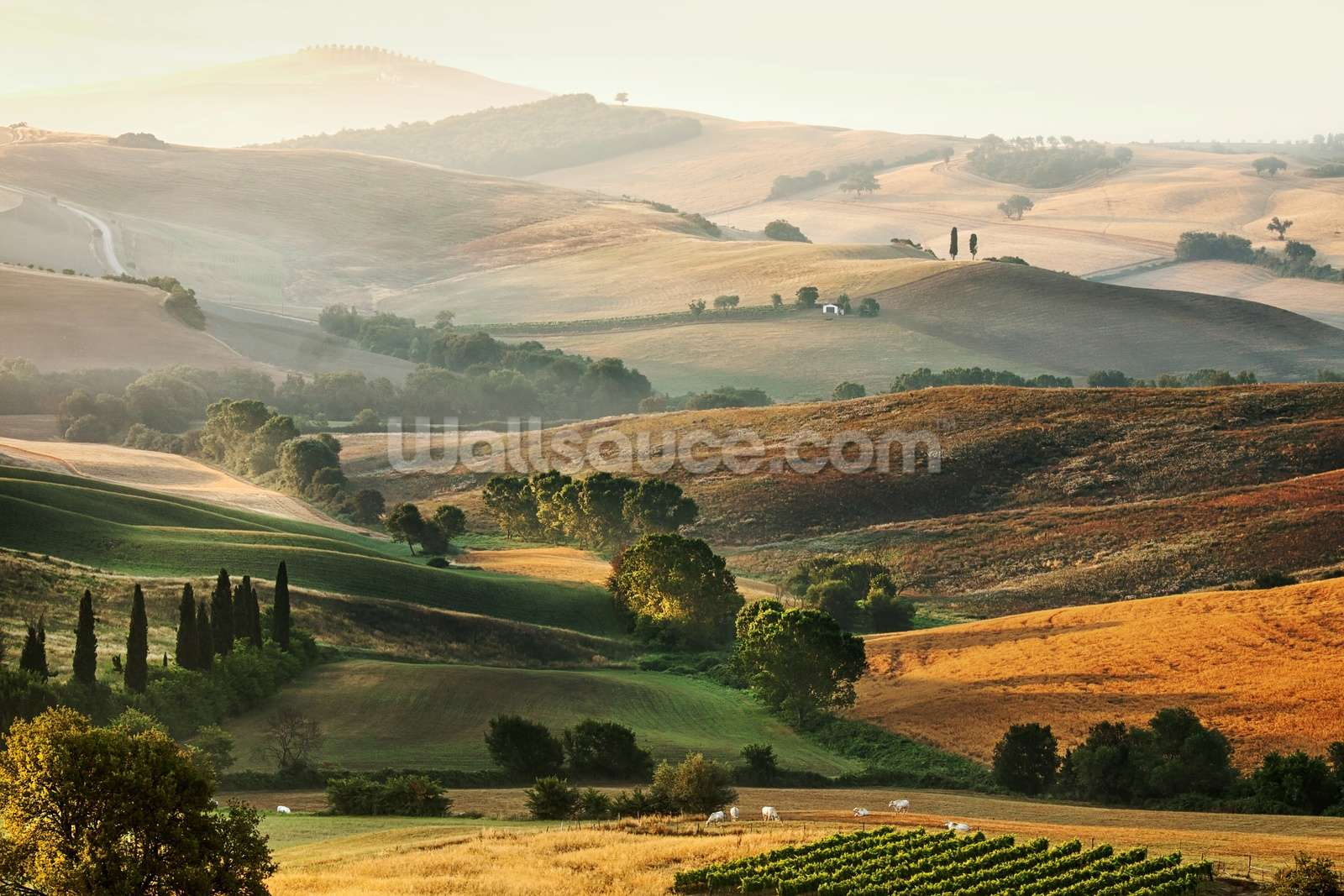 Make A Car >> Italian Countryside Wallpaper - WallpaperSafari