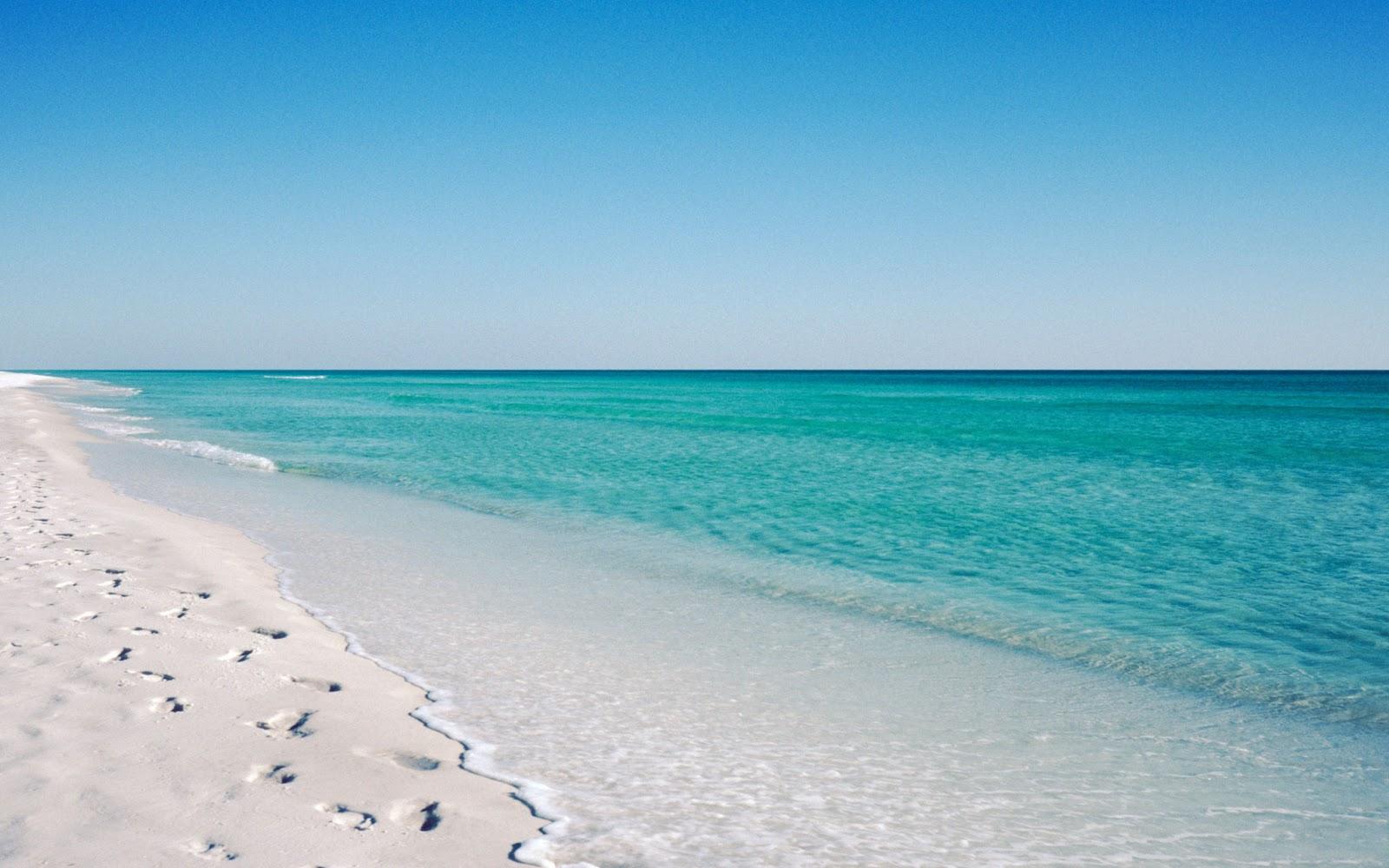 Florida Beach Scene Wallpaper Wallpapersafari