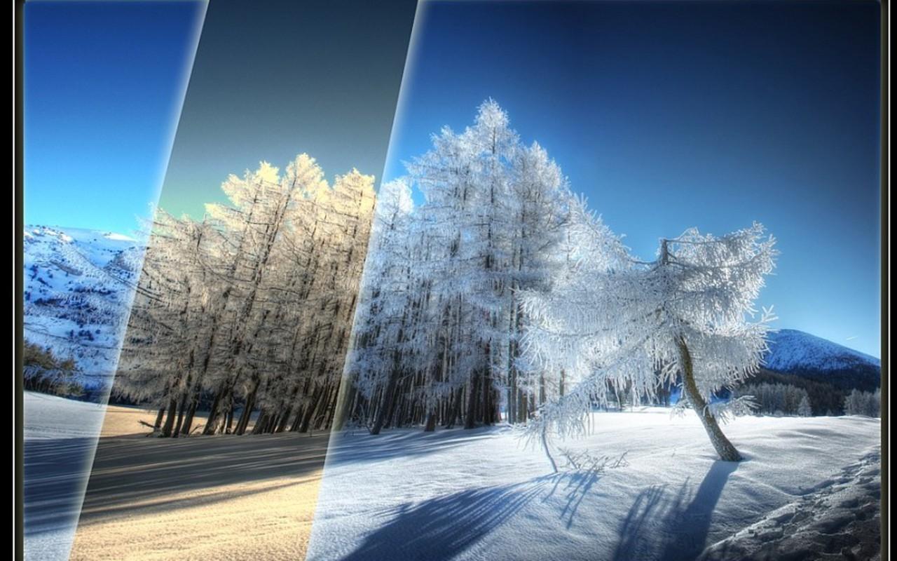 Beautiful Winter Scenery Wallpaper Hd Wallpaper 1280x800