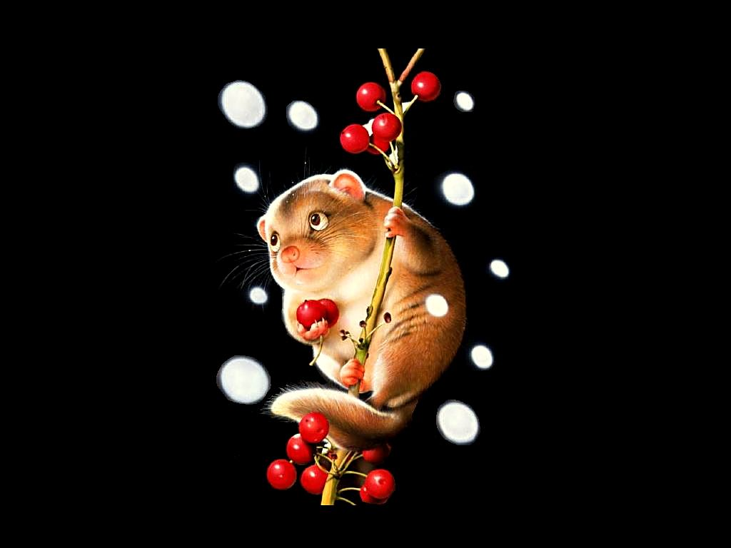 3d hd wallpapersfree wallpaper 3danimal pictures wallpapercute 3d 1024x768