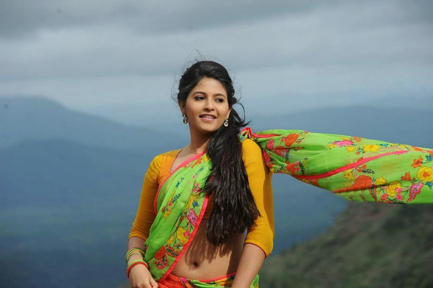 Anjali Actress in Saree Photoshoot   New HD Wallpapers 1427x950