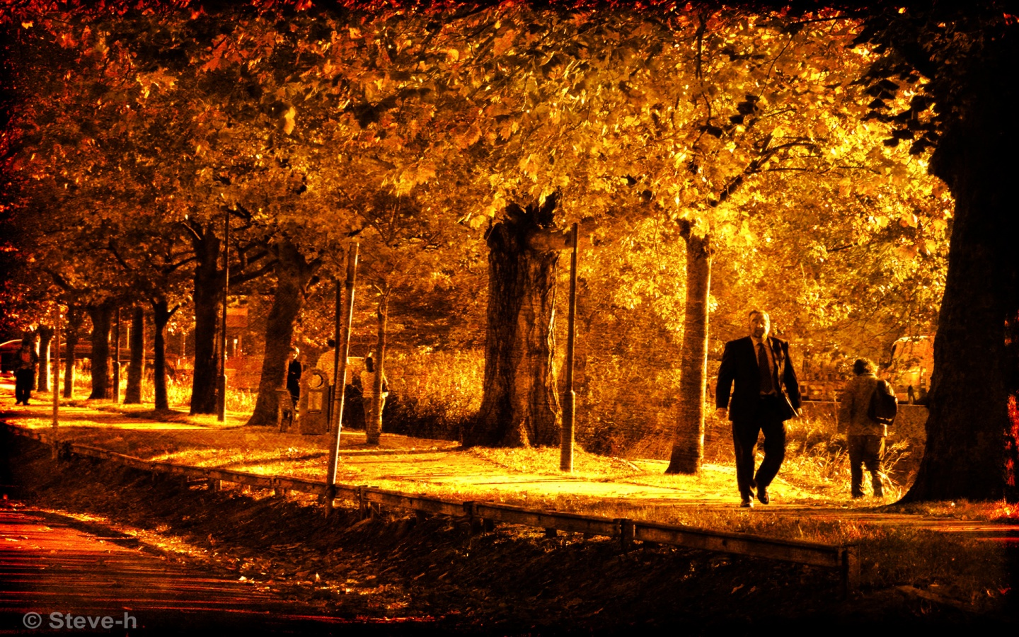 Autumn gold 1440x900 wallpaper download page 816046 1440x900