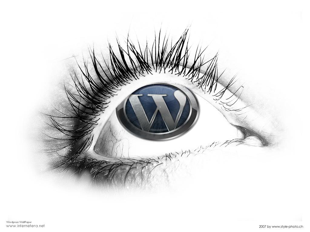 Web Developer Wallpaper 1024x768