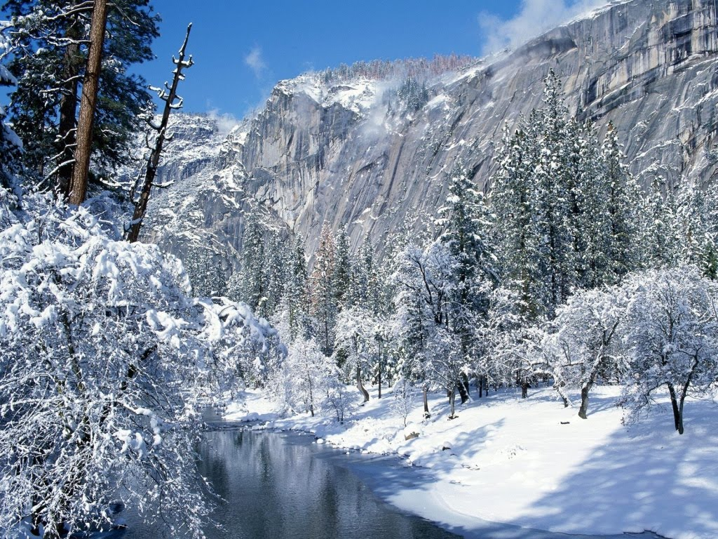 Winter Wallpaper And Pictures Wonderland Scenes 1024x768