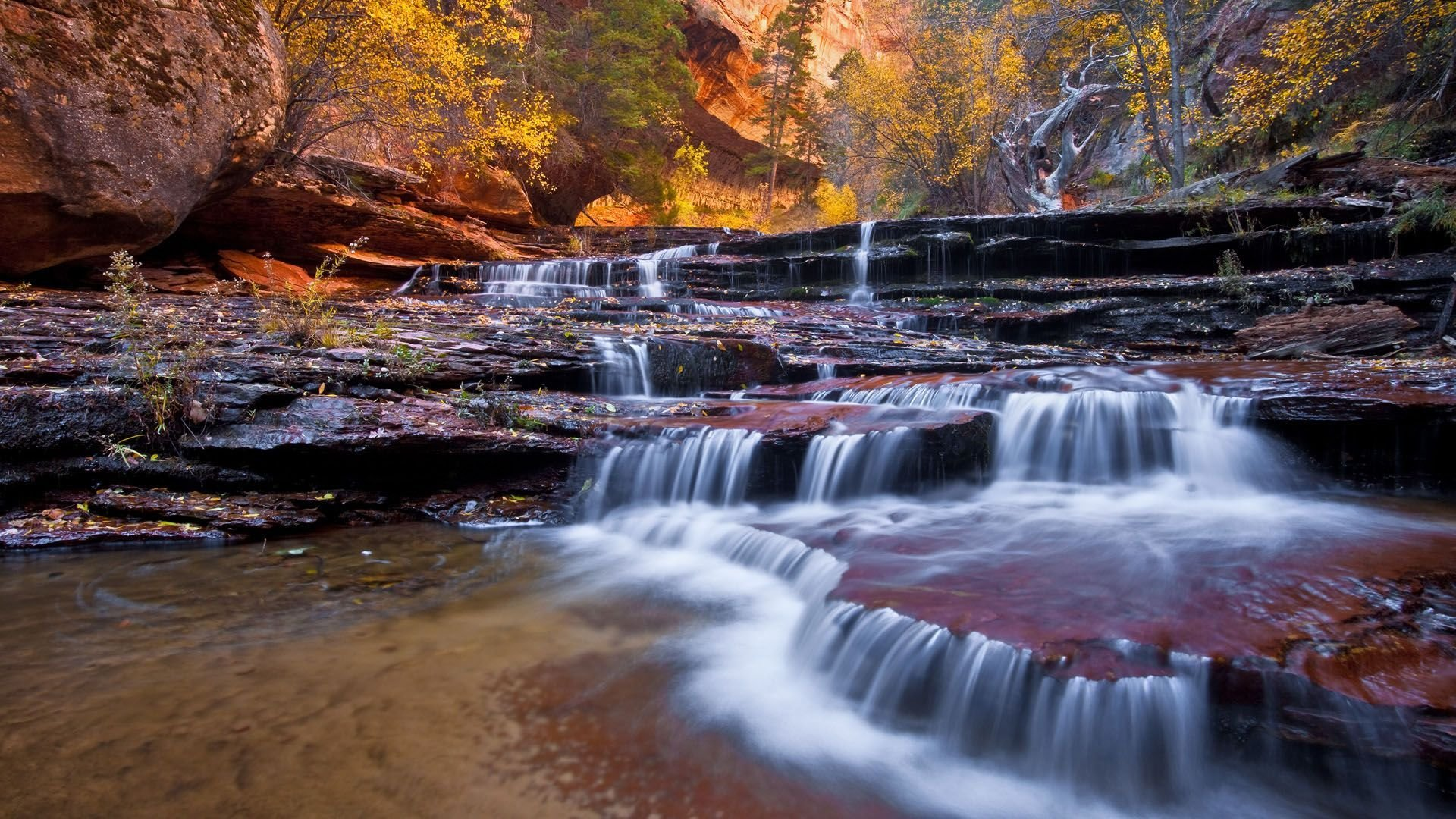 Small creek in Zion National Park Wallpaper 1920x1080
